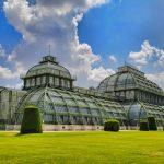 stort växthus
